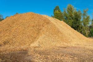 Biomassa berg