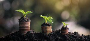 Duurzame beplanting