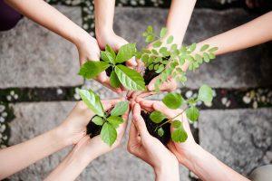milieu vriendelijk sharing is caring